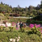 Mae Taeng Camping View Resort,  Mae Taeng