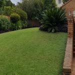 Jeds, Johannesburg