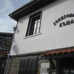 Denizovata house,  Zeleno Dŭrvo