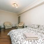 Day Rent Apartment on Velyka Vasylkivska 51, Kiev