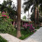 Sauraha Resort, Sauraha