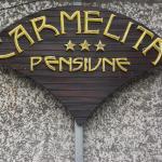 Villa Carmelita, Craiova