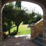 Agriturismo il Canto della Gallina, Villastrada