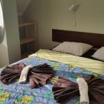 Terve Hostel,  Pärnu