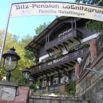Hotel Pictures: Bilz-Pension, Radebeul
