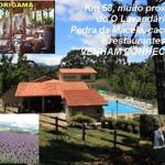 Sítio Aparição, Cunha
