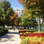 Park Apartment, Budapest