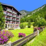 Wohlfühl- und Wellnesshotel Alpenhof,  Saas-Almagell