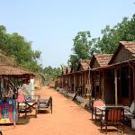 Wonderland Hostel, Anjuna