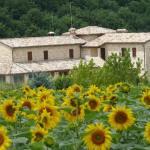 Casale Fabrizi Agriturismo,  Cingoli