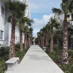 Jardin de Majorelle, Tangier