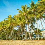 Alamanda Palm Cove by Lancemore,  Palm Cove