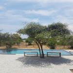 The Wild Tusker, Kirinda