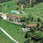 Fattoria I Fratelli Villa Vivai, Dicomano