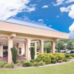 Baymont Inn & Suites - Greenville, Greenville