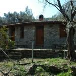 Gera's Olive Grove - Elaionas tis Geras,  Perama