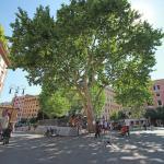 Apartment Delia Piccola, Rome