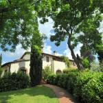 Donizzetti, Montaione