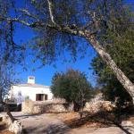 Quinta Peixe,  Alfontes