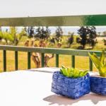 Studio Coral View, Giardini Naxos