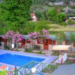 Montenegro Motel, Faralya