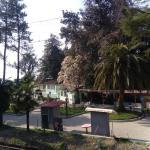 Vesna, Makhinjauri