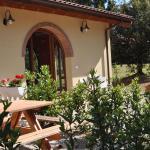 Casa Etrusco,  Bibbona