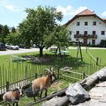 Ferienwohnungen Ödmühle, Inzell