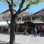 Affittacamere Rezzo,  Monte San Giacomo