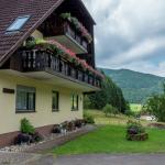 Apartment Haus Am Wald 3, Simonswald
