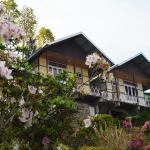 Himalayan Eagle Resort,  Kalimpong