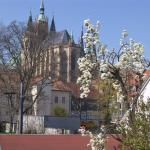 Pension am Dom, Erfurt