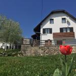 Guest House Aurora,  Poljanak