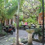 Green Palm Homestay,  Nusa Penida