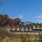 Yulan Green Roof, Datong