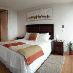 Sinai Apartamento, Concepción