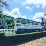 Ashburnham Tea Estate, Elkaduwa