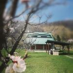 Mila Holiday Home, Lohovo