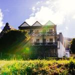 Altes Winzerhaus & Gästehaus, Cochem