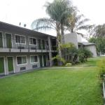 Lemon Tree Motel,  Pomona