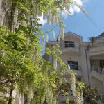 Apartments Roman Gardens, Risan