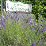 Hotel Diana Garni,  Malente