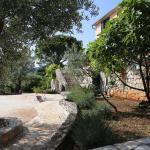 Villa Nela, Žanjica