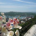 Aquilonis Hotel, Vladivostok