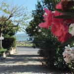 Petit Palais,  Castiglione del Lago