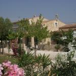 Locations des Alpilles, Saint-Rémy-de-Provence