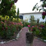 Hotel Pictures: Chambre d'Hôtes Dyrslot, Saint-Denis-de-Pile