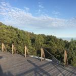 Loft Studio in Costa Alta,  Malyy Utrish