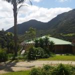 Waiotemarama Falls Lodge, Opononi