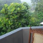 Mount Hood Residency (Home Stay), Kandy